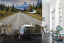 Komar - Fototapete ATLIN ROAD - 368x254 cm -