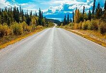 Komar Fototapete Atlin Road, bedruckt-Wald-Meer,
