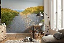 Komar - Fototapete SANDY PATH - 368 x 254 cm -