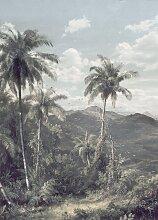 Komar Fototapete The Exotic Land,
