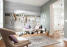 Komar Fototapete WHITE HORSES | 368 x 254 cm |