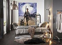Komar  - Star Wars - Fototapete REY - 184 x 254 cm