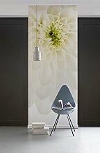 Komar - Vlies Fototapete BEAUTIFUL - 100 x 280 cm