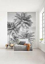 Komar Vlies Fototapete Cocco - Größe: 200 x 250