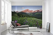 Komar Vlies Fototapete PICTURESQUE SWITZERLAND |