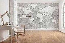 Komar Vlies Fototapete World Relief - Größe: 350