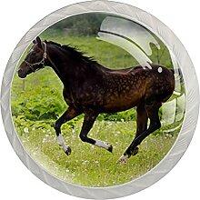Kommode Knöpfe Pferdewiese Badezimmerknöpfe 4