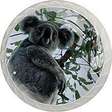 Kommode Knöpfe Schöner Koalabaum