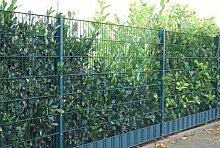 Komplett Paket-Preis 50m Zaun 1830mm Höhe RAL6005/grün Doppelstabmattenzaun, Gartenzaun, Metallzaun, Zäune, Tor, Gartentor,