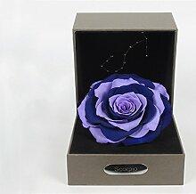 Konstellationen Von Bunten Importiert Live Blume