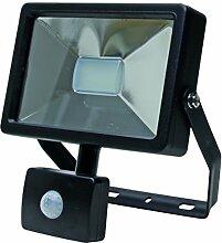 Kopp 216630015 LED Wandfluter mit Bewegungsmelder,