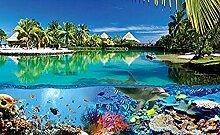 Korallenriff Fototapete Fototapete Vlies Natur