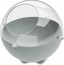 koziol Vorratsdose  Orion S,  Kunststoff, cool grey / transparent klar, 22,6 x 22,6 x 20 cm