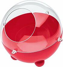 koziol Vorratsdose  Orion S,  Kunststoff, himbeer rot / transparent klar, 22,6 x 22,6 x 20 cm