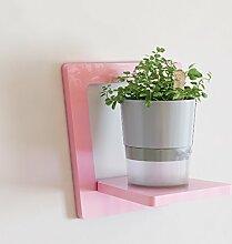 Kreative Wandregale, Wohnzimmer Regal Wand hängende Blumen Racks, dekorative Racks, Balkon Wandregale, Pflanze Blumentopf Rack ( Farbe : Pink , größe : 30*20*30cm )