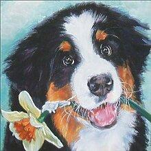 Kreuzstich-Stickerei für Haustiere, Motiv Berner