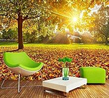 Kuamai Custom 3D Wallpaper Sonnigen Herbst Ahorn Blätter Natur Tv Hintergrund Wand Wohnzimmer Dekoration Wallpaper 120 X 100 Cm