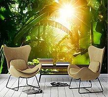 Kuamai Sunny Green Forest Tv Hintergrund Wand