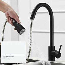 Küchenarmatur,Edelstahl Einhand-Nickel Gebürstet