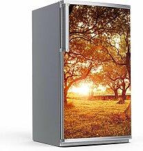 Kühlschrank 60x120 cm Kühlschrankmotiv Küchen   Design Kühlschrank-Tür Aufkleber Folie Sticker abwaschbar Kühlschrank folieren   Design Motiv Tree Sunligh