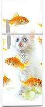 Kühlschrank Aufkleber Katze mit Goldfisch