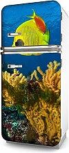 Kühlschrank-Folie Segelfisch selbstklebend