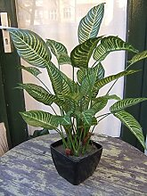 Künstliche Aphelandra Pflanze getopft ca. 60cm