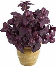 Künstliche Basilikum-Pflanze, klein, 30,5 cm