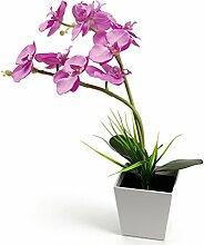 Künstliche Orchideen ledmomo 9LED-Leuchten mit