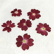 Künstliche Pflanze Blume, Exemplar Großhandel