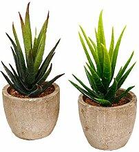 Künstliche Pflanze Künstliche sukkulente