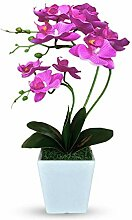 Künstliche Pflanze Phalaenopsis Bonsai,