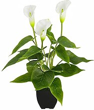 Künstliche Pflanzen Blumen, Real