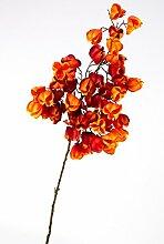 Künstliche Physalis mit 50 Früchten, orange-rot, 95 cm - Herbstdekoration / Künstlicher Zweig - artplants