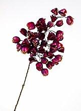 Künstliche Physalis mit 50 Früchten, violett-pink, 95 cm - Herbstdekoration / Künstlicher Zweig - artplants