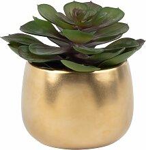 Künstliche Sukkulenten-Pflanze, Topf aus