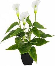 Künstliche Topfpflanze Gefälschte Calla-Lilie