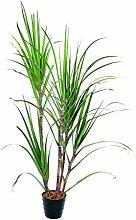Künstliche Zuckerrohr-Pflanze im Dekotopf, 210 cm - Künstliche Pflanze / Deko Pflanze - artplants