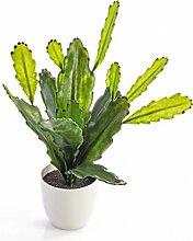 Künstlicher Blattkaktus / Epiphyllum Pflanze mit 16 Blättern, Dekotopf, 35 cm - Künstliche Sukkulente / Deko Kakteen - artplants