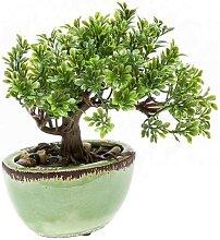 künstlicher Bonsai FICUS im Keramik Topf H. 19cm