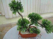 künstlicher Bonsai Japan-Kiefer 25-30 cm