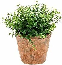Künstlicher Eukalyptus LUCANO im Terracotta Topf, grün, 20 cm - Kunstpflanze / Kräuter Pflanze - artplants