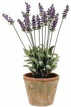 Künstlicher Lavendel VALERIE im Tontopf, 18 Blütenrispen, lila- Kunst Blumen / Deko Pflanze - artplants