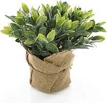 Künstlicher Salbei VITUS im Jutesack, grün-weiß, 20 cm - Kunstpflanze / Kräuter Pflanze - artplants