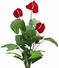 Künstliches Anthurium mit 3 Blüten, 50 Blätter, 70cm - Kunstanthurium / Flamingoblume - artplants