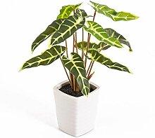 Künstliches Caladium im Keramiktopf, grün-gelb, 35 cm - kleine Kunstpflanze / Deko Pflanze - artplants