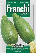 Kürbissamen - Zucchini Bolognese von Franchi Sementi