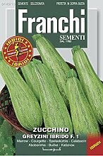 Kürbissamen - Zucchini Greyzini Ibrido von Franchi Sementi