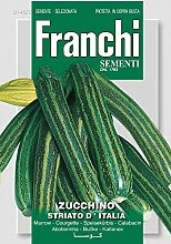 Kürbissamen - Zucchini Striato D'Italia von Franchi Sementi