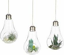 KUMOPYU 3er Pack Glühbirne Hängende Vase Glas